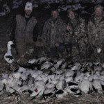 February snow goose hunt