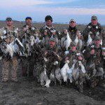 Snow geese harvest over Deadly Decoys™