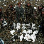 Spring Snow Goose Hunts 2014_004