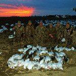 Spring Snow Goose Hunts 2014_013