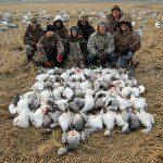 Arkansas rice field snow goose hunt