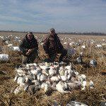 Spring Snow Goose Hunts 2014_065
