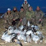 Another successful spring snow goose hunt