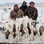 spring-snow-goose-hunt-2013-17
