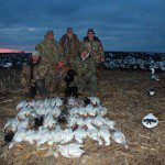 Missouri has some excellent snow goose hunting.