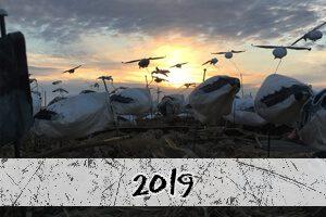2019 snow goose hunt photos